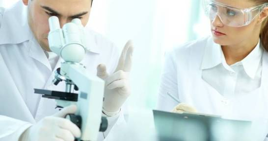 Immunologia – jak odczytać wynik badania?